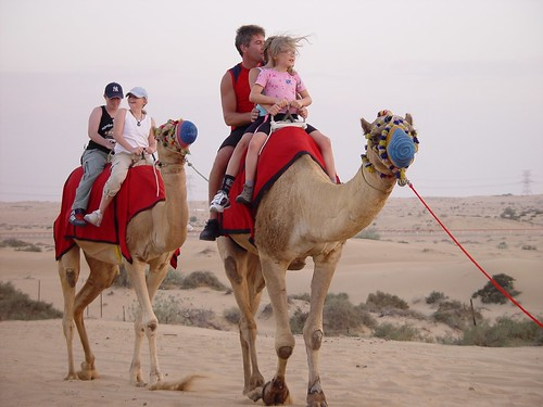 Dubai Desert Safari and Camel Rides