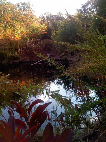 Manasquan Reservoir Environmental Center | by mary_wagner_design