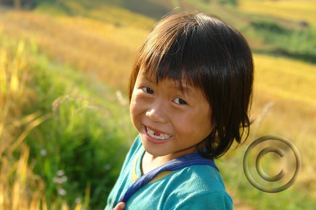 Black Hmong girl during rice harvest,  Sapa Vietnam