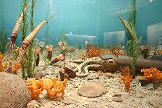 Life in the Ordovician   by Ryan Somma
