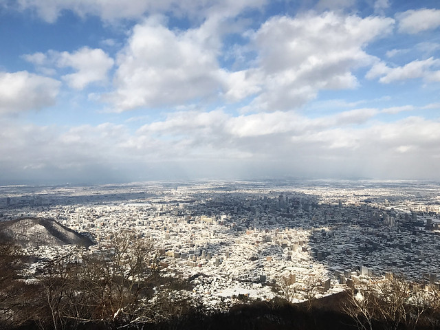 Aerial view of Sapporo, Hokkaido