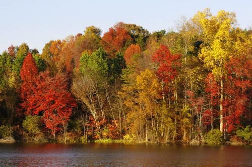 sunset wallpaper lake fall colors lakeside