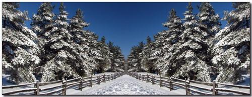 blue trees winter sky white snow ontario canada green rural fence landscape mirror vanishingpoint lisas symmetry explore allrightsreserved caledon 5052 interestingness102 i500 mywinners mywinner abigfave anawesomeshot copyrightlisastokes