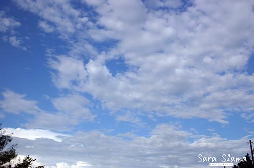 Blue Clear Sky | by Sara_Coffey