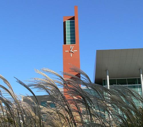 new blue autumn tower clock grass lumix cool october view cityhall michigan detroit center government warren 2007 vandyke damncool dmcfz30 aplusphoto excapture