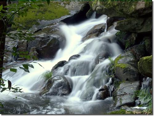 cascadas golddragon