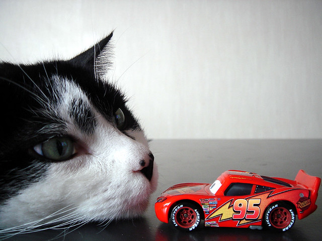 lighting mcqueen vs enormous cat