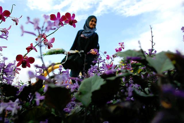 3a6ceb8ff gadis dan bunga