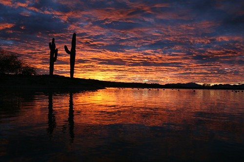 pictures wallpaper arizona art fountain beautiful sunrise wow photography photo photos pics awesome great bonito picture large surreal az fair lindo artshow hermoso february 2008 sonnenaufgang beau magnifique streetfair artfair joli belo tallest nascerdosol craftshow bello precioso magnifico 日出 黎明 fountainhills 日の出 superbe 美しい salidadelsol hübsch wunderschön maravilloso decorativo יפה leverdusoleil herrlich すばらしい guapísimo splendide 美丽的 freeadmission 美麗的 magnífico espléndido великолепный прекрасный 拂晓 diamondclassphotographer greatfair 漂亮的 出色的 完美的 greatfairartgreat превосходный 立派な יפהפה‬