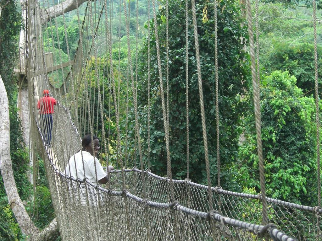 Ghana Travel  Kakum Canopy Walk