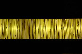 tiger light | by donovanhouse