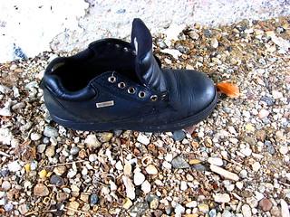 Solo Laceless Shoe