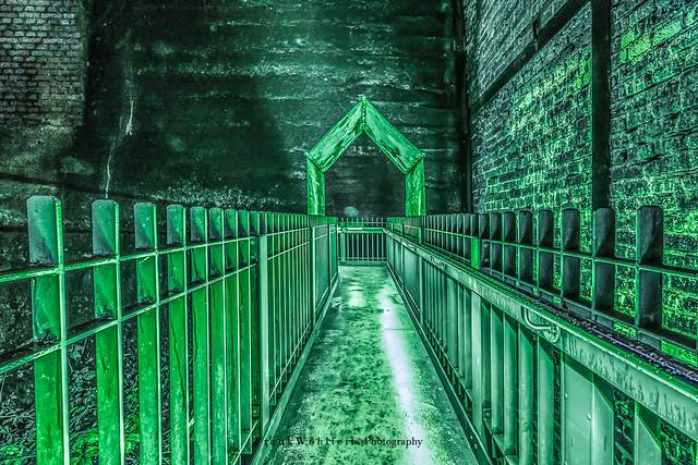 Der Weg in die Grüne Hölle / The green way to hell