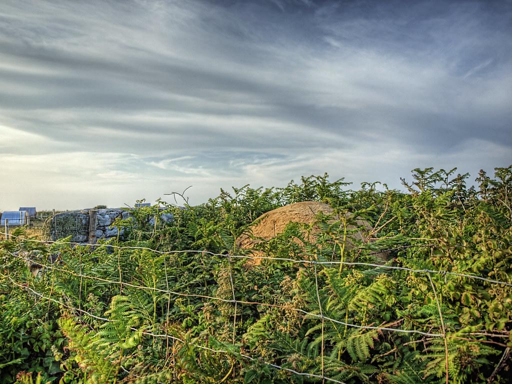 An Alderney Stone  - Hiding in the Landscape