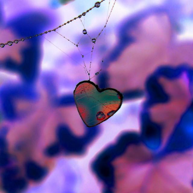 Delicate entanglament............