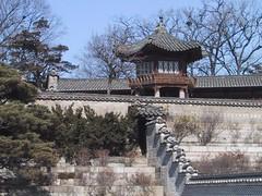 Seoul 44