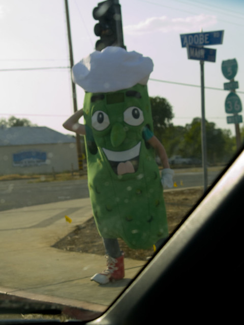 Mr. Pickle