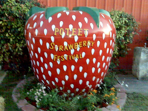Big Strawberry | by The Fickle Technologist