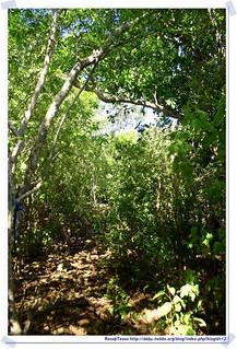 20041020_Guana@BVI_Grand Ghut Trail_001_A | by rosstsai
