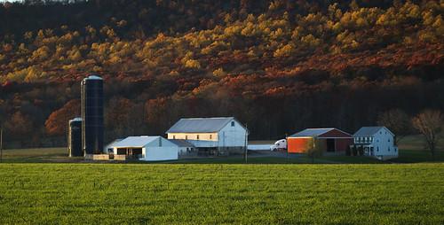 nikon pennsylvania farm pa 365 d80