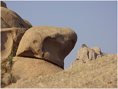 devil rocks, idar | by nevil zaveri (thank you for 15+ million views:)