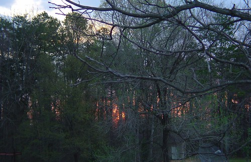 morning nature beautiful sunrise charlotte carolina suffletown