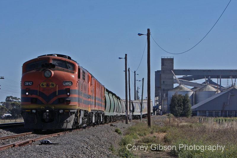 GM42, CLP17 & CLP8 loading grain at Murtoa by Corey Gibson