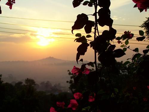 africa city morning travel flowers sunrise hills uganda kampala 5photosaday geoafrica