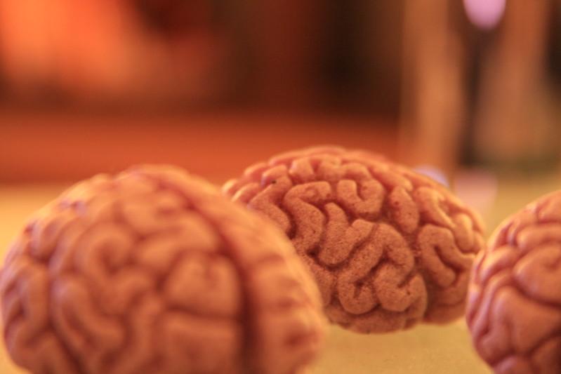 Brains, brains!