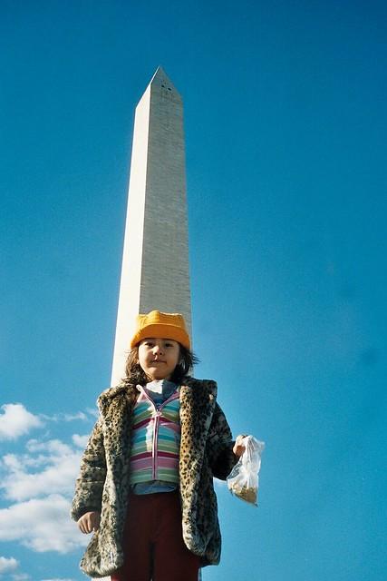 Washington Monument II
