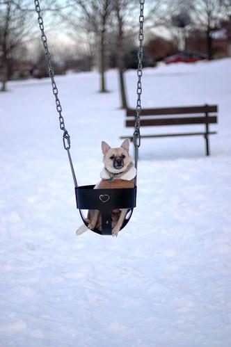 Boss on Swing
