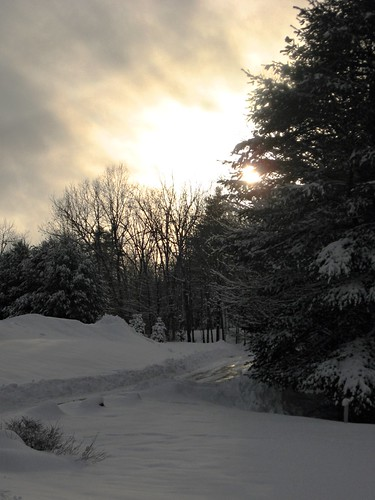 trees winter light sunset sky cloud sun snow storm tree field clouds forest evening bush woods ray shine path branches maine newengland evergreen blaze deciduous snowfall snowbank plowed bowed greendrz