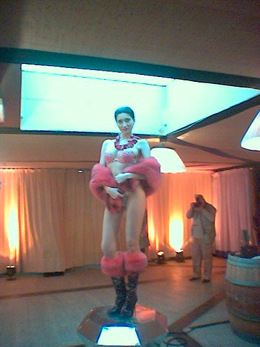 miptv fashionTV 2006