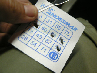 Andesmar Bus Bingo! | by purplespace