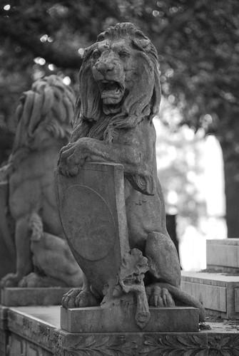 Chippewa Lion | by jimdeane