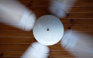 1920x1200_fan.jpg | by Leon Wilson