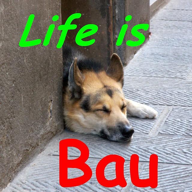 Life is bau