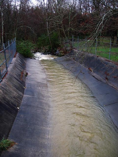 Breeding Mill Branch Creek, Ensor Sink Park, Cookeville, TN
