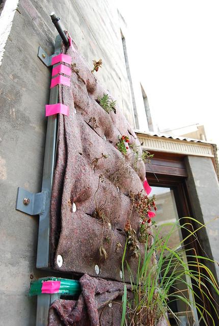 mobbs' vertical garden