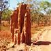 V národním parku Litchfield narážíme na pole termitišť – Magnetic Termitic Mounds, foto: Andrea Flieglová