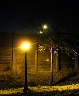 Lamp & Tree