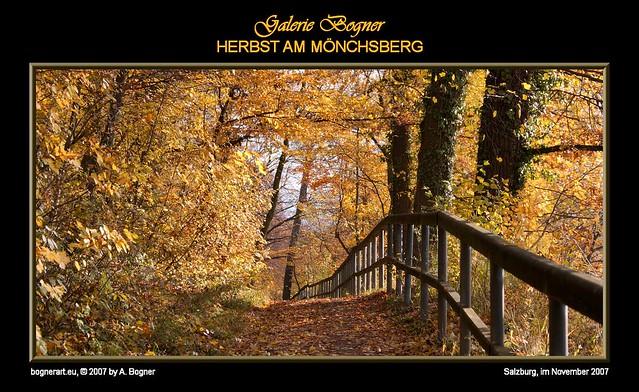 2007-11 HERBST AM MOENCHSBERG 001
