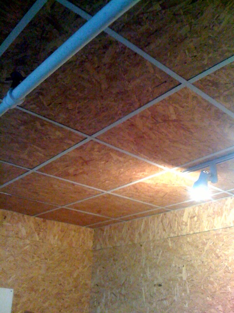 Plywood drop ceiling | -- Jeffrey Kalmikoff | Jeffrey Kalmikoff | Flickr