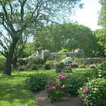 spring at the Staten Island Botanical Gardens