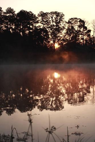 morning nature water fog sunrise landscape pond mrgreenjeans gaylon blackwaterconservationarea canonef50mmf25compactmacro anawesomeshot diamondclassphotographer flickrdiamond mistonthewater gaylonkeeling
