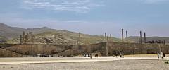 Iran Persepolis _DSC6010
