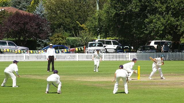 cricket 012d