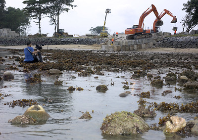 Sentosa: reclamation of reef