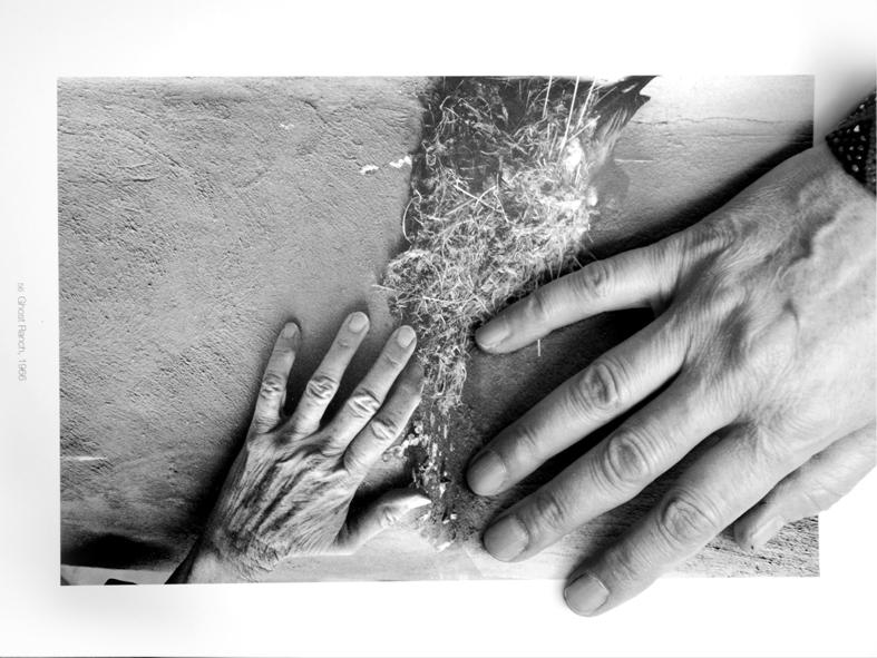 Рука художника должна быть прекрасна?