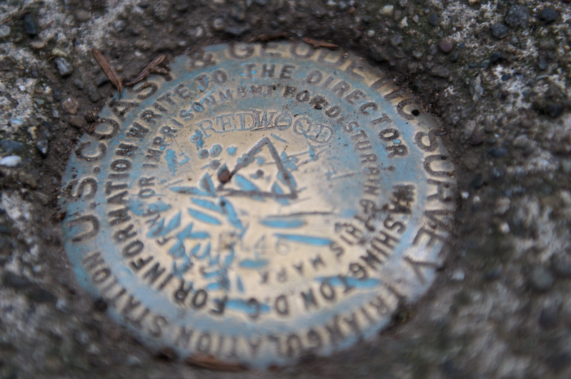 Redwood benchmark